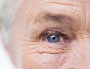 UVA Researchers Gain New Insights on Macular Degeneration